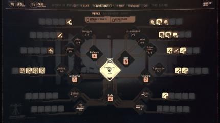 cyberpunk-20177-personalisation-4