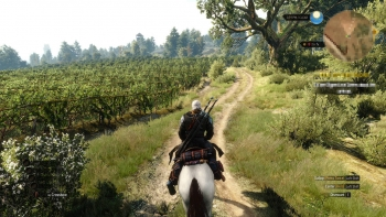 1443440893-the-witcher-3-wild-hunt-hearts-of-stone-go-your-way